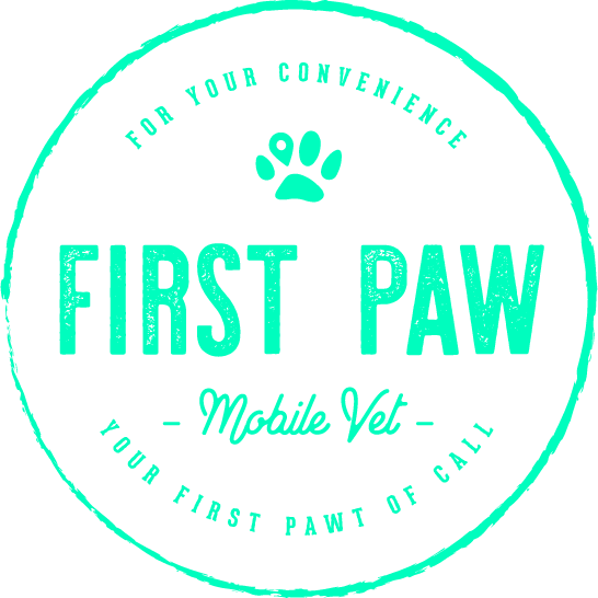 First Paw